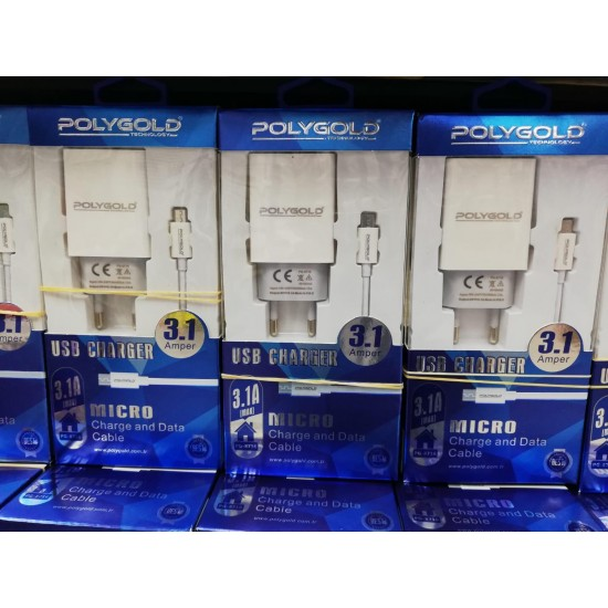 PG-8716 Mıcro 3.1Amper Çıft usb Set Sarzı