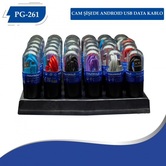 PG-261 CAM ŞİŞEDE ANDROID USB DATA KABLO